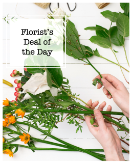 Florist\'s Deal of the Day
