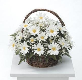 Garden Table Basket