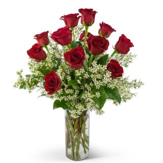 Swoon Over Me Red Roses